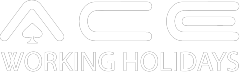 Ace Working Holiday Logo